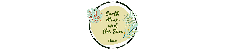 Earth Moon and the Sun