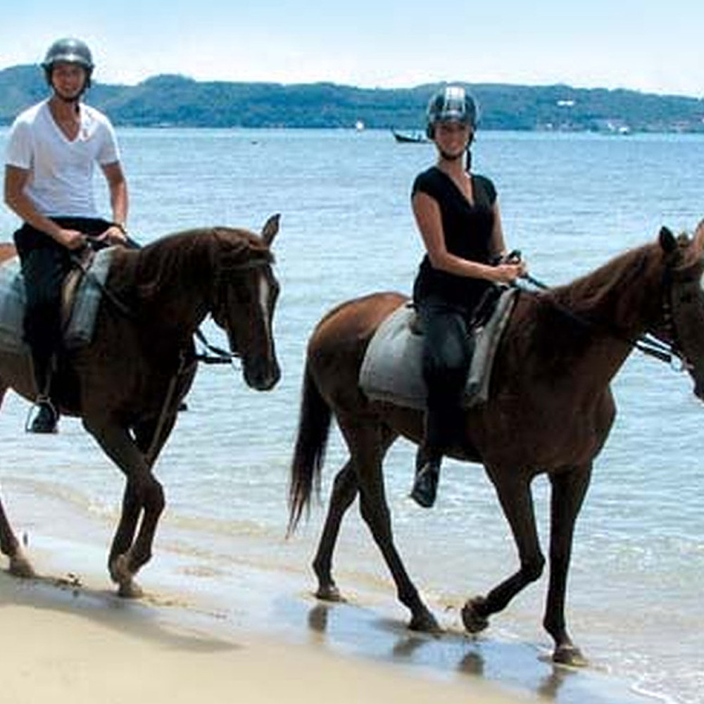 Al Arabi Travel Agency Horse Riding Tour in Thailand Contribution