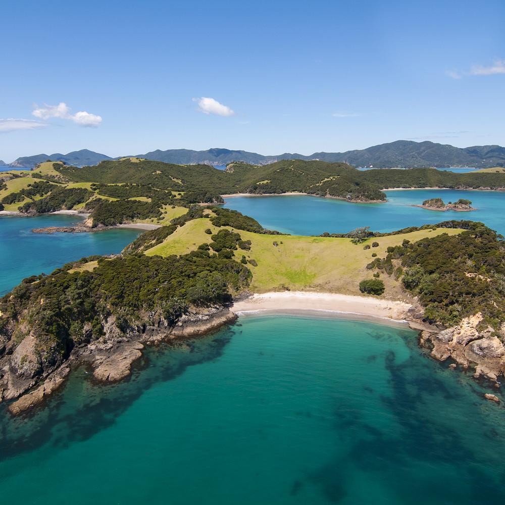 Contribution to Honeymoon Suite in New Zealand