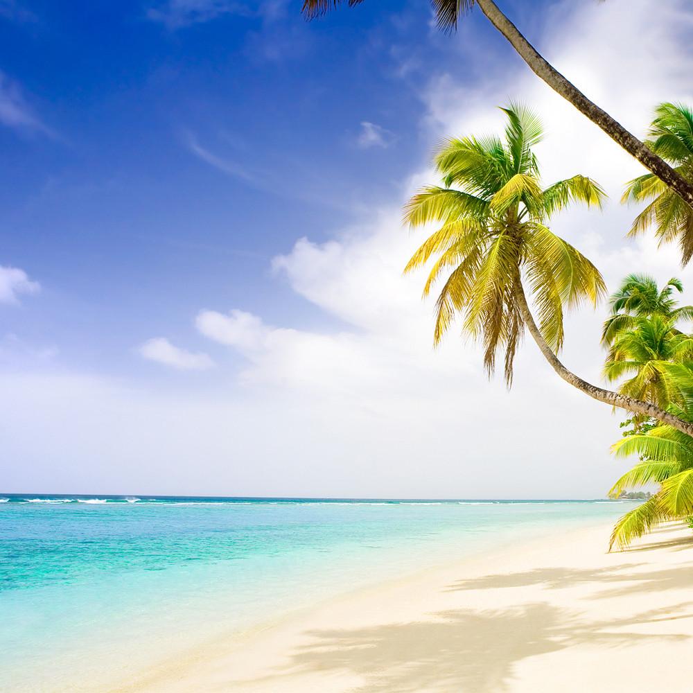 Contribution to Honeymoon Suite in Antigua