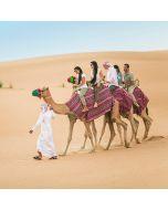 Camel Desert Safari - Adult