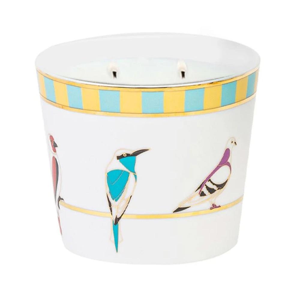 Silsal Sarb Naseem Candle (500g)